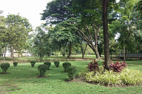 ルンピニ公園